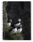 Ingolfshofthi Puffins Iceland 2855 Spiral Notebook