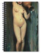 Ingres: The Spring, 1856 Spiral Notebook