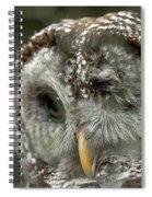 Injured Owl Spiral Notebook
