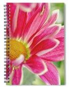 Inmost Feelings. Spiral Notebook