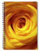 Inner Beauty Of A Rose Spiral Notebook