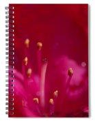 Inner Fire Spiral Notebook