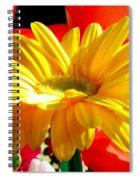 Inner Glow Spiral Notebook