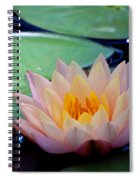 Inner Peace Spiral Notebook