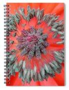 Inner Poppy Spiral Notebook