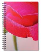 Innocence Of Love Spiral Notebook