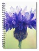 Innocence Of Spring Spiral Notebook