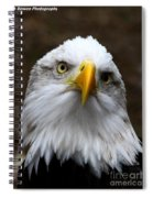 Inquisitive Eagle Spiral Notebook