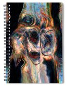 Insane Spiral Notebook