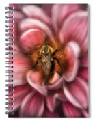 Insect - Bee - Center Of The Universe  Spiral Notebook