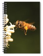 Insect - Bee - Honey I'm Home Spiral Notebook