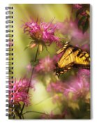 Insect - Butterfly - Golden Age  Spiral Notebook