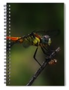 Insect 1 Spiral Notebook