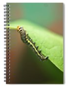 Insect Larva 3 Spiral Notebook