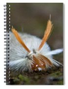 Insect Larvae With Hairdo Spiral Notebook