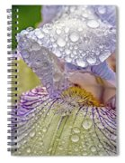 Inside A Bearded Iris Spiral Notebook