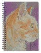 Insightful Glow Spiral Notebook