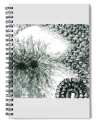 Insights From The Infinite Intelligence #655 Spiral Notebook