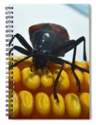 Inspecting Beetle Spiral Notebook