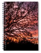 Intense Sunset Tree Silhouette Spiral Notebook