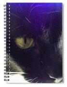 Intense Spiral Notebook