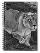 Intensity 3 Bw Spiral Notebook