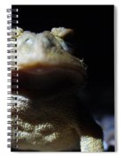 Interrogation Of A Toad Spiral Notebook