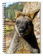 Interview With A Swamp Wallaby Spiral Notebook
