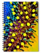 Intimate Spiral Notebook