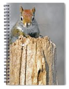 Intimate Look Spiral Notebook