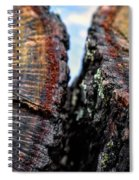 Intimately Separate Spiral Notebook
