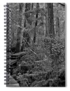 Into A Magical World Black And White Spiral Notebook