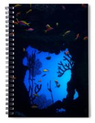 Into Another World Spiral Notebook