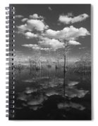 Into The Everglades Spiral Notebook