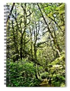 Into The Forest Spiral Notebook