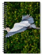 Into The Mangroves Spiral Notebook