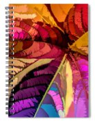 Into The Rainbow Spiral Notebook