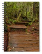 Into The Rainforest Spiral Notebook