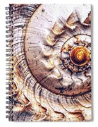 Into The Spiral Spiral Notebook