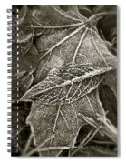 Intricately Frosted Spiral Notebook
