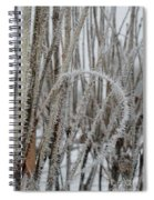 Intriguing Winter Frost Spiral Notebook