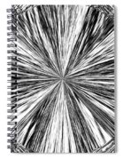 Introspective Spiral Notebook