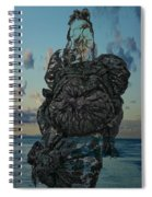 Invisable Lady Spiral Notebook