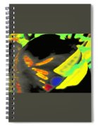 Invisible To The Naked Eye Spiral Notebook
