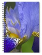 Invitation To Blue Spiral Notebook