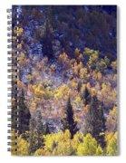 Inyo Aspens Spiral Notebook