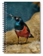 Iridescent Starling Spiral Notebook