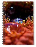 Iridescent Water Drops Spiral Notebook