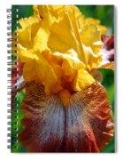 Iris 1 Spiral Notebook