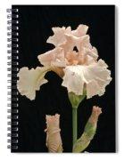 Iris 2 Spiral Notebook